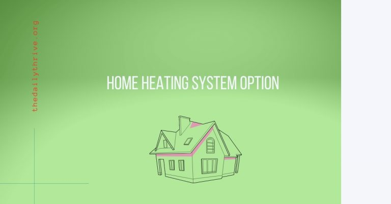 Home Heating System Option