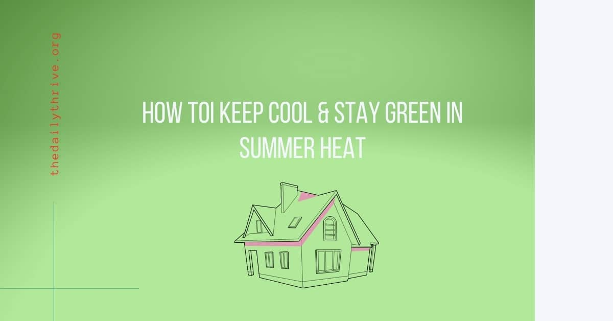 How can I Keep Cool and Stay Green in Summer Heat