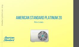 American Standard Platinum 20 Reviews